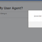 [Video] XSS via malicious user agent